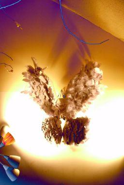 intallation tiltled feathered 1